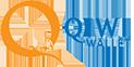 Автоматический ввод средств через платежную систему QIWI Wallet